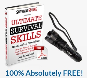 Click Here for Free Limited Offer Hybeam Torch & Survival Guide