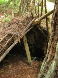 survival shelter designs debris hut shelter